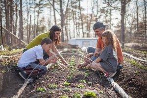 Family Wellness Coaching in Charlottesville, VA